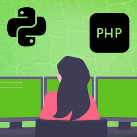 How Are Programming Languages The Need Of The Hour